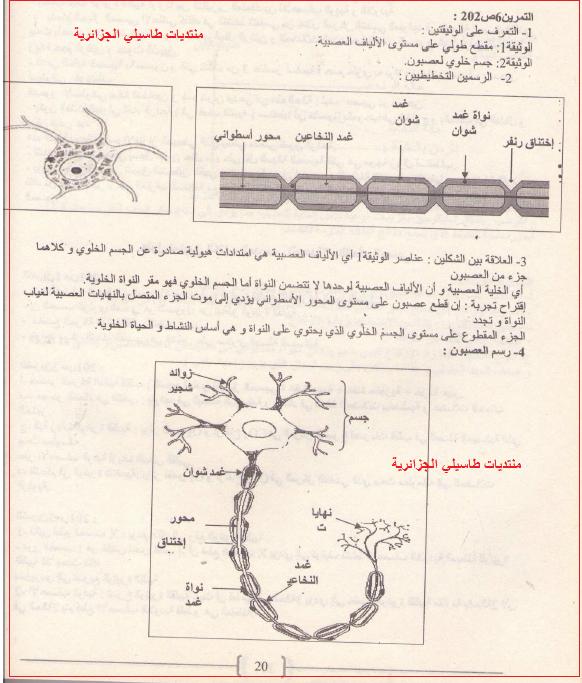 حلول تمارين العلوم الطبيعية للسنة اولى ثانوي  Do